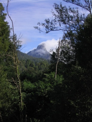 Wollumbin view